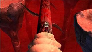 God of War Collection - Tr�iler