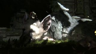 The Last Guardian - TGS