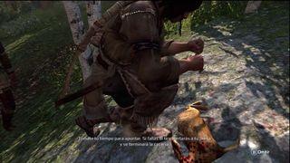 Assassin's Creed III - Caza