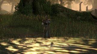 The Elder Scrolls Online - Recursos y exploraci�n