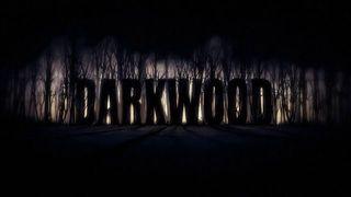 Darkwood - Jugabilidad