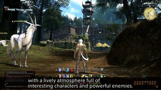 Final Fantasy XIV: A Realm Reborn - Interacciones