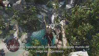 Assassin's Creed IV: Black Flag - Mundo abierto
